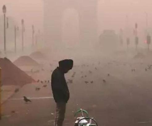 Delhi - NCR
